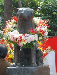 Hachiko statue in Shibuya on the April 8, 2009 memorial ceremony.
