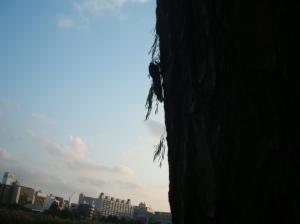 A Cicada against Tokyo's skyline