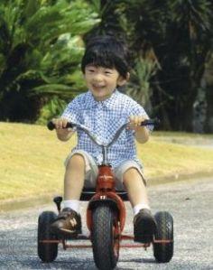 悠仁親王 (Prince Hisahito) now at age 3.