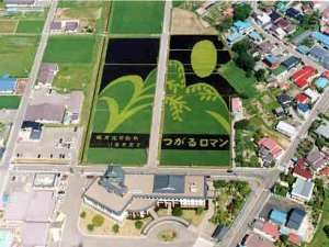 The rice artwork in Inakadate-mura from summer 2002.