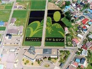 The rice artwork in Inakadate-mura from summer 2002.