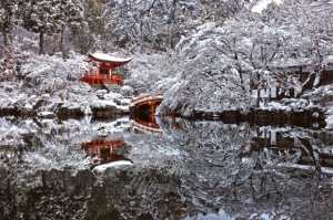 daigo snow 1